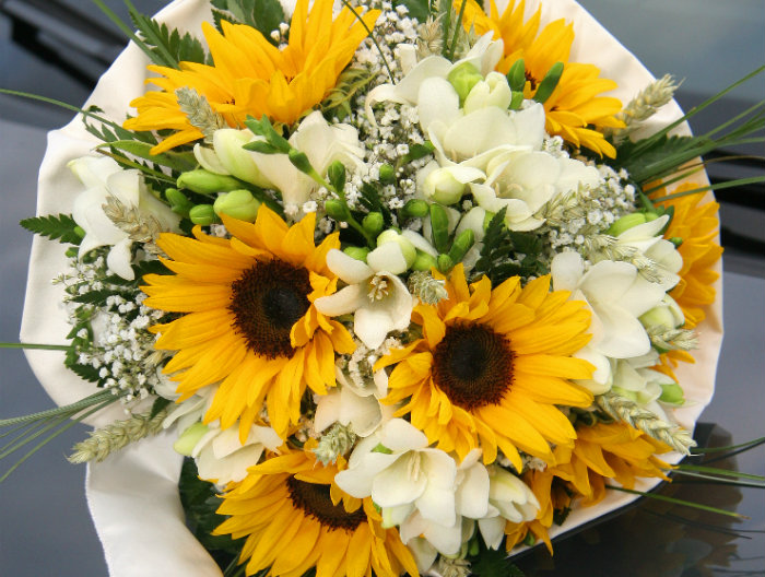 Matrimonio Coi Girasoli : Chiesa girasoli e lisiantus fiorista mantovani