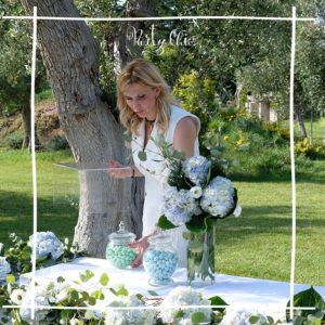 Party Chic Wedding Planner